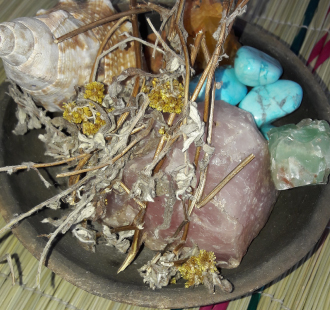 career-guidance-shells-and-gemstones